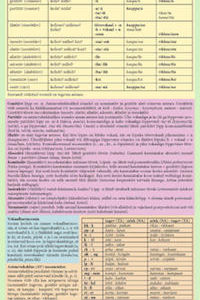 soome-keele-grammatika-põhireeglid
